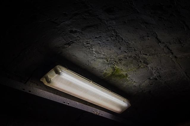 zářivka ve sklepě.jpg